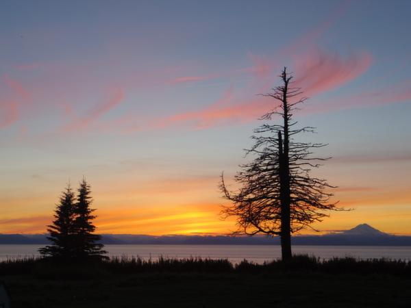 Serene night overlooking the Cook Inlet