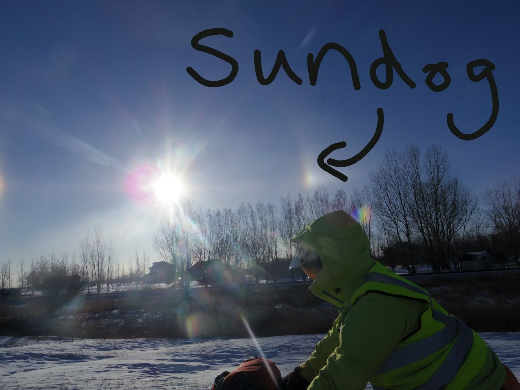 Sundogs and crazy bikers go out in the wintry....